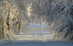 winter-1060526_1920