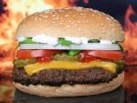 hamburger-1238246_960_720